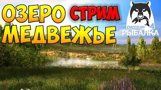 Російська Рибалка 4 Ведмеже озеро ● в пошуках риби