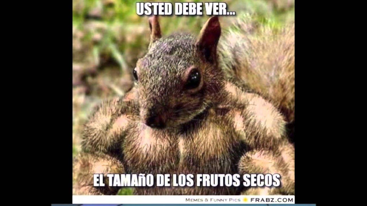 Spanish Memes - YouTube