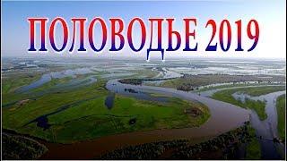 вЛАДИМИР ПЕЧЕНКИН СЕЛИТРЕННОГО ИЮЛЬ 2017 Г