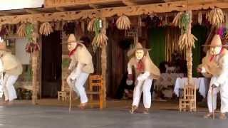 Video Danzas Tradicionales de Michoacan: Danza de los Enguangochados download MP3, 3GP, MP4, WEBM, AVI, FLV Oktober 2018