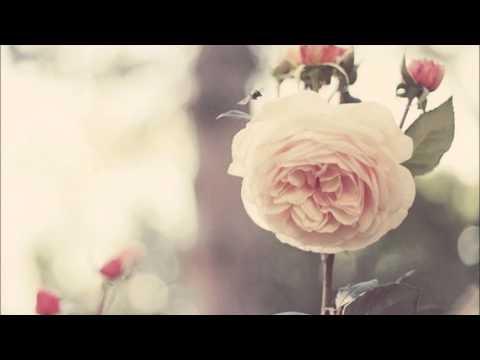 Halo - Ane Brun ft Linnea Olsson Lyrics / Letra en español