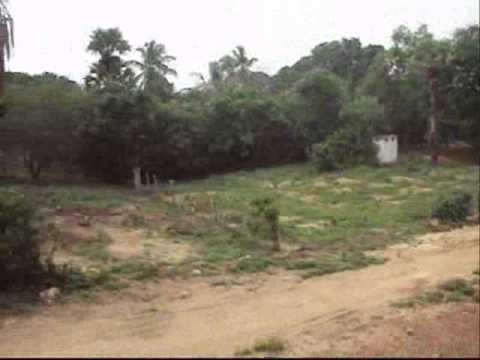 Sri Lanka Elle: My Kiliknochchi Visit