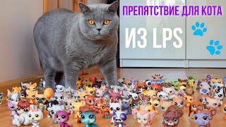 LPS против КОТА  ВЫЗОВ ПРИНЯТ / LPS and CAT
