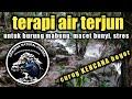 Terapi Semua Burung Kicau Suara Asli Sungai Air Terjun  Mp3 - Mp4 Download