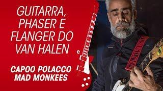 Guitarra, phaser e flanger do Van Halen por Capoo Polacco, Mad Monkees