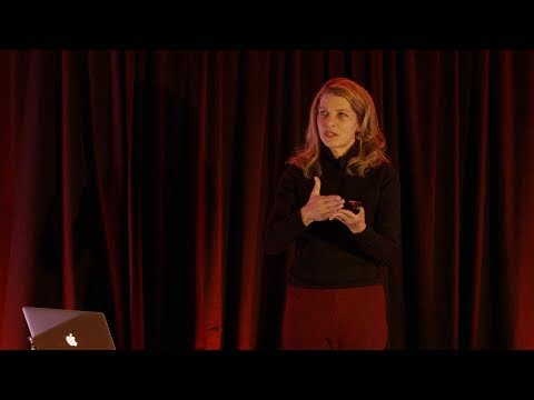 Nina Teicholz - Red Meat and Health