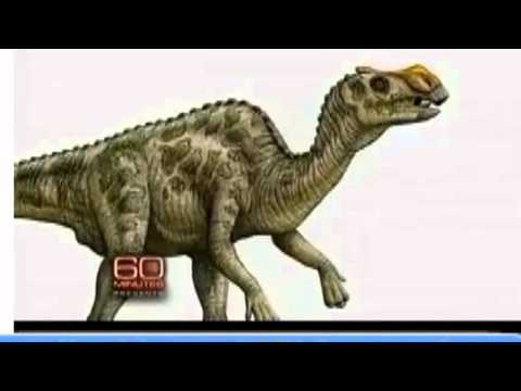 2015 Peer Reviewed Proof Dinosaurs Are Not Millions Of Years Old