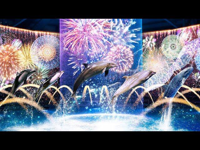 Dolphin Night Show At Maxell Aqua Park Shinagawa. Digital Fireworks ver.  【4K】