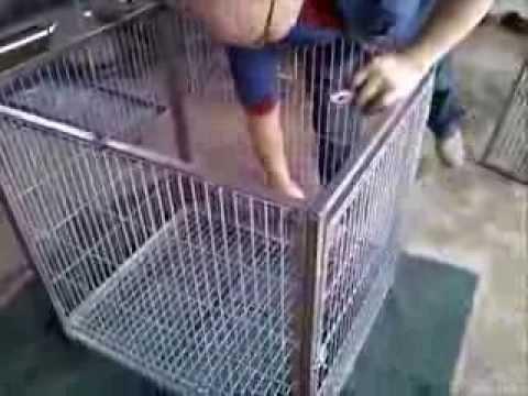 Jaula para perros desarmable youtube for Jaulas de perros