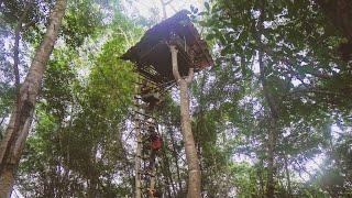 สร้างบ้านบนต้นไม้ สูงที่สุดในประเทศไทย เอาชีวิตรอดในป่าลึก [EP.2/2]
