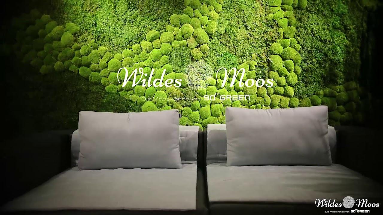 wildes moos die moosw nde von 90degreen youtube. Black Bedroom Furniture Sets. Home Design Ideas