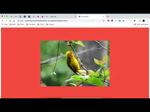 2.2 How To Center Align An Image In HTML?