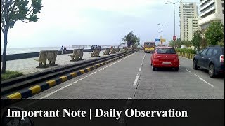 Important Note | Daily Observation