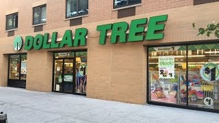 Dollar Tree Haul NYC - late August 2016 part 1