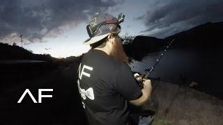 arizona flathead catfish fishing and losing a big bass 3k subscribers