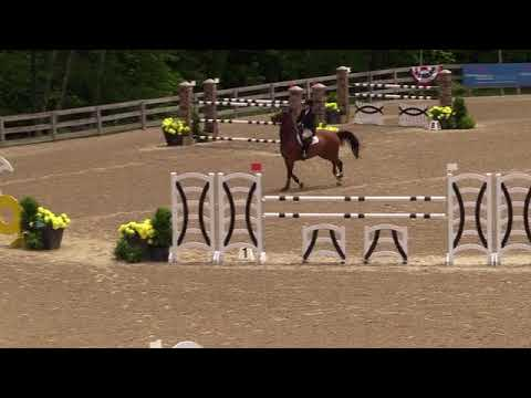 Video of JET SET DB ridden by CALLIE SEAMAN from ShowNet!
