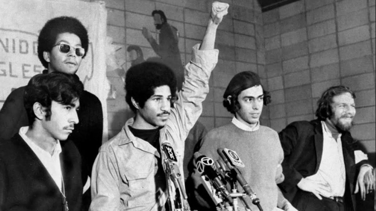Brief History of the Young Lords Organization