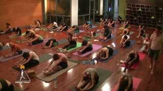 """FULL Yin Yoga """"Complete"""" class (60 min.) with Travis Eliot"""