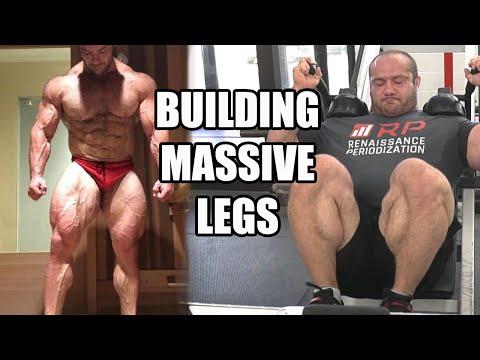 How To Build MASSIVE Legs Ft Mike Israetel (full Leg Workout)