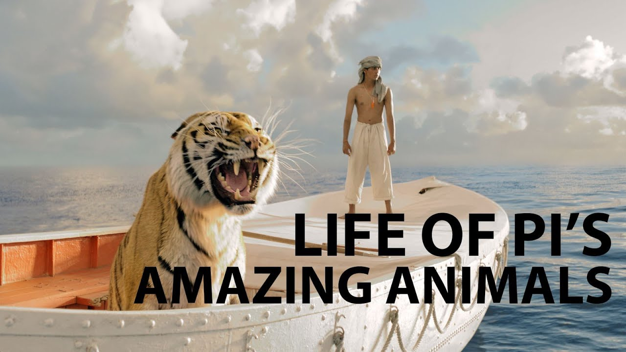 how life of pi became a visual masterpiece
