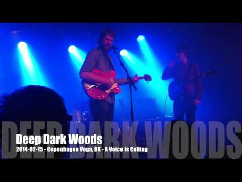 Deep Dark Woods - 2014-02-15 - Copenhagen Vega, DK - A Voice is Calling