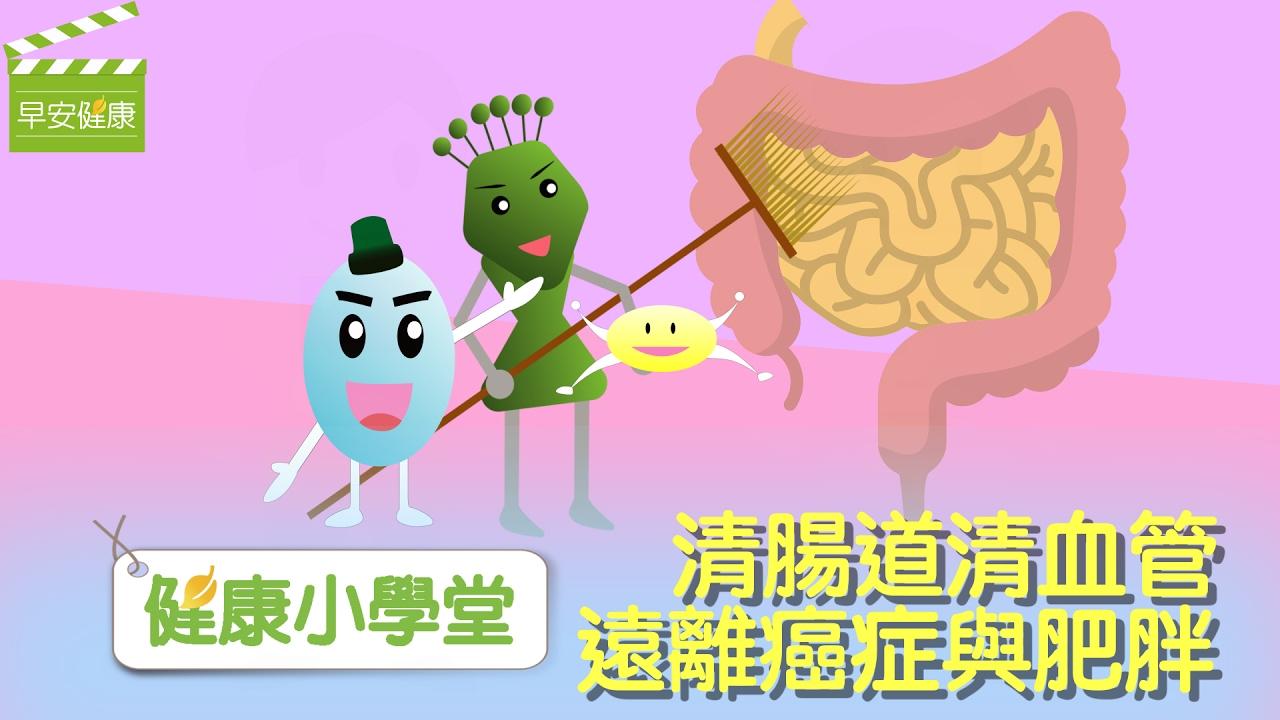 清腸胃清血管,遠離癌癥與肥胖【早安健康/健康小學堂】 - YouTube
