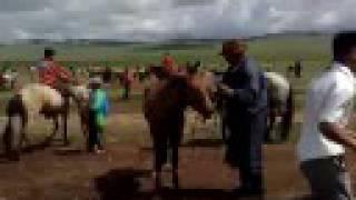 horseride finishing in bulgan aimag
