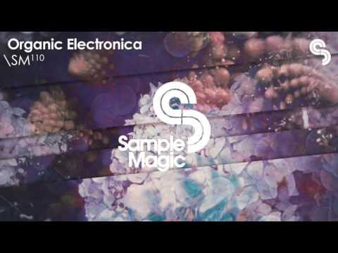 SM110 - Organic Electronica