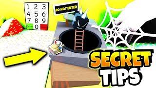 7 SECRETS ROBLOX I WISH I KNEW! (Mise à jour du simulateur d'essaim d'essaim d'abeilles)