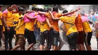 Download Video Dahihandi Festival MP3 3GP MP4
