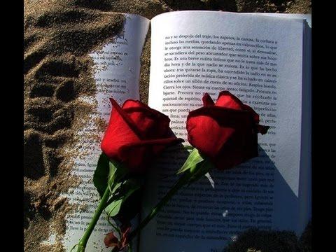 Sant Jordi - www.kanal25.com