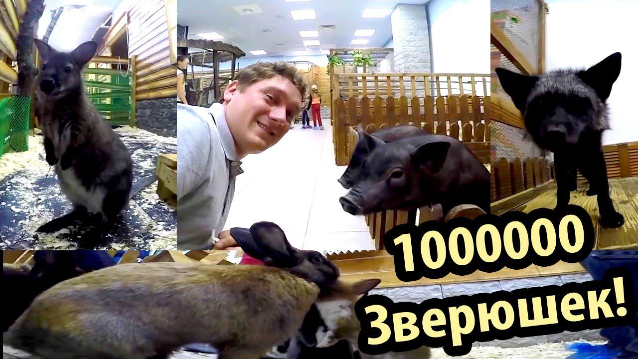 Доставка цветов и букетов по Киеву, Украине и миру. http://buket .