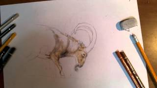 Ibex art