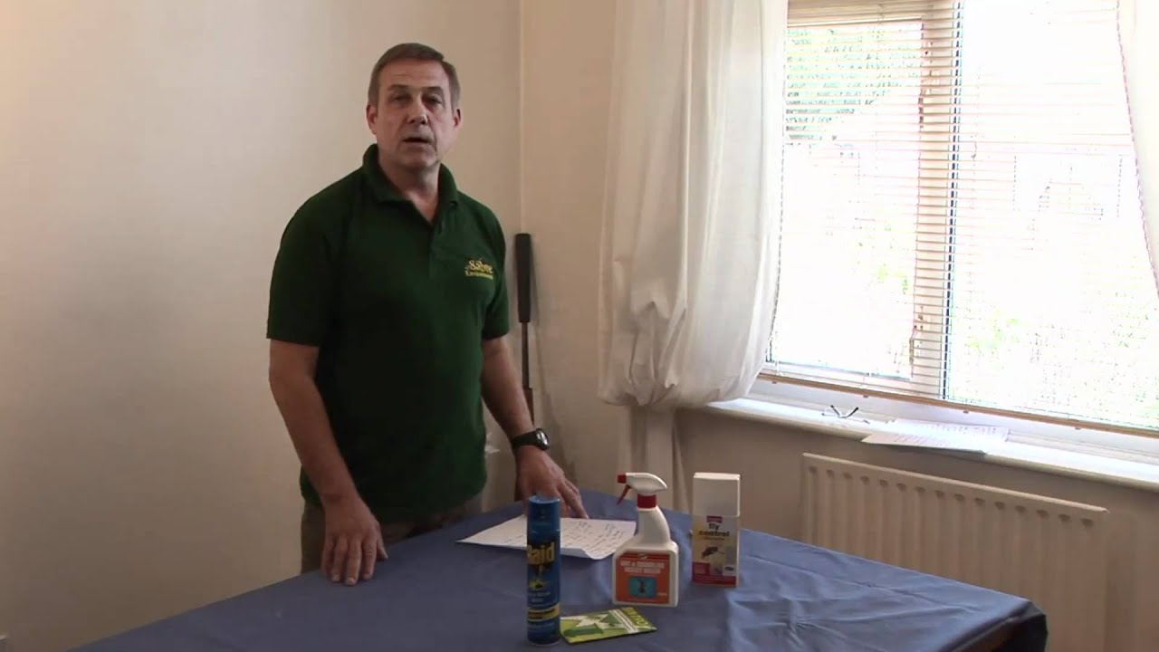 Download How To Get Rid Of House Flies