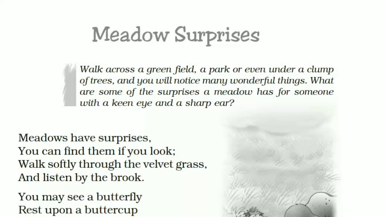 NCERT Class 7 English - Honeycomb - Meadow Surprise - Poem   Brief Hindi  Explanation  