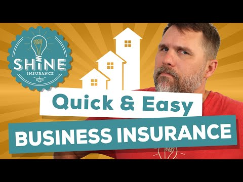Business Insurance: A Quick & Easy Overview