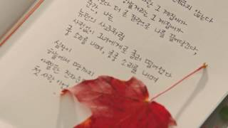 Video Lagu korea romantis Crush Beautiful life ost Goblin (Full HD) download MP3, 3GP, MP4, WEBM, AVI, FLV November 2017