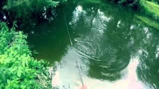Летняя Рыбалка, Река Десна, Окунь, Август 2015(, 2015-10-17T18:10:07.000Z)
