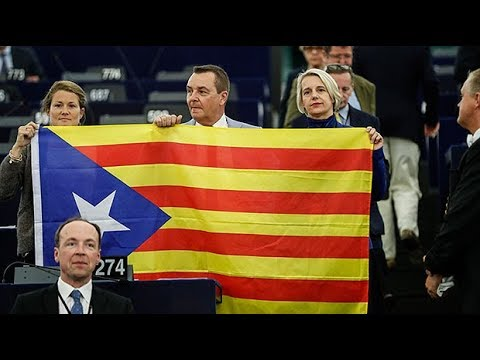 European Parliament members unfurl Catalan flag during session
