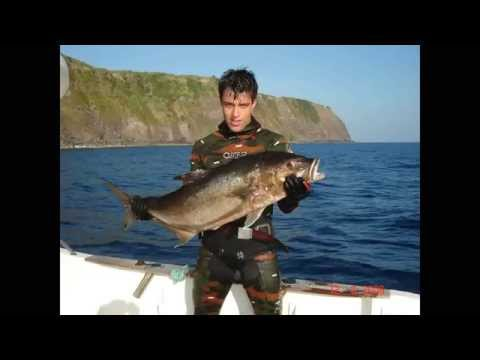 Pico Island summer catches (Azores spearfishing)
