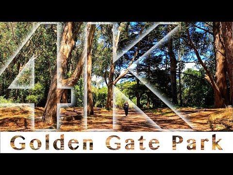Golden Gate Park San Francisco California   Walking Through The Park 4K UHD