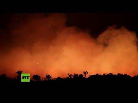 Los incendios forestales de la Amazonía y Bolivia en tiempo real