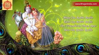 Popular Krishna Bhajan - Shree Vrindavan Dham Apaar Rate Ja  By Anup Jalota