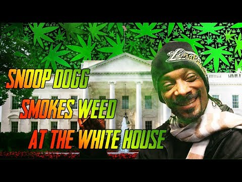 Snoop Dogg smokes blunt at the White House [MyMixtapez News] Mp3