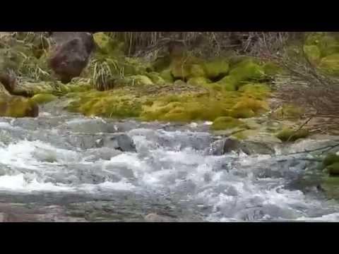 Creek At Maroon Lake Scenic Trail