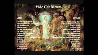 Vide Cor Meum - HD