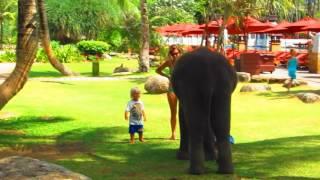 Little Elephant at JW Marriott Hotel Phuket (Chang Noi 555)