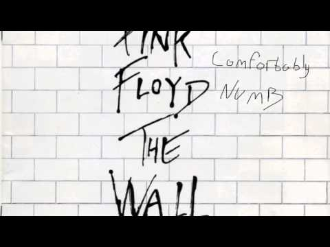 Pink Floyd - Comfortably Numb [800% Slower]