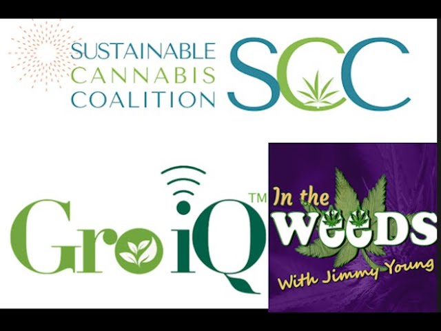 Gro IQ CEO Peter Dougherty on In The Weeds with Jimmy Young