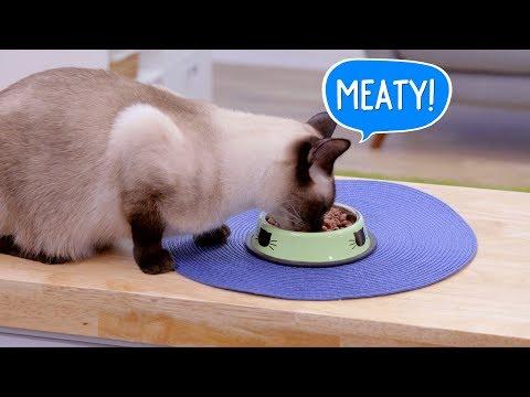 vital-essentials-cat-food,-treats-&-toppers